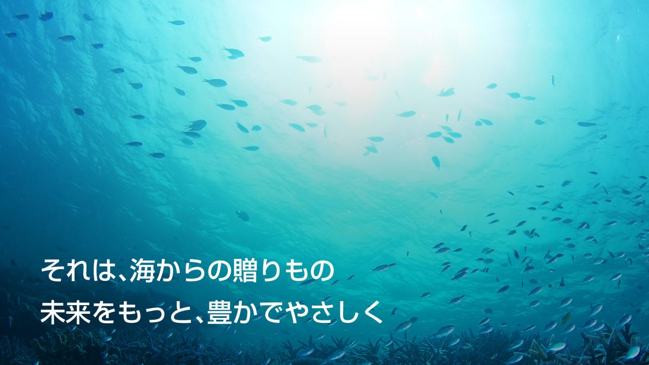 それは、海からの贈りもの 未来をもっと、豊かでやさしく